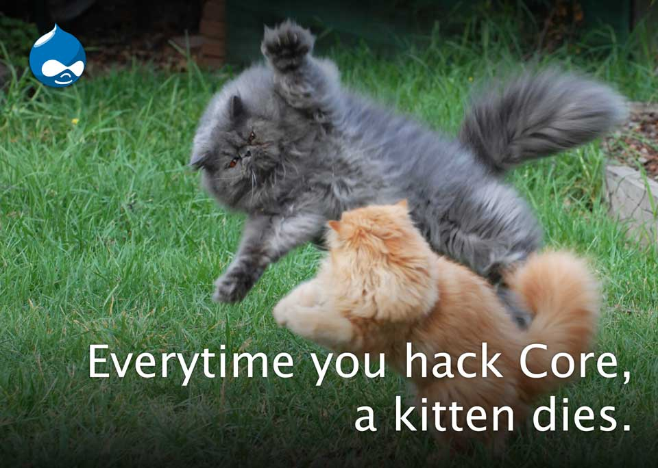 Drupal Meme: Never Hack Core or Cat Dies
